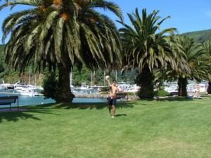 Dejligt vejr i Picton