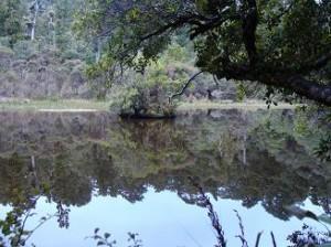 En spejlblank sø